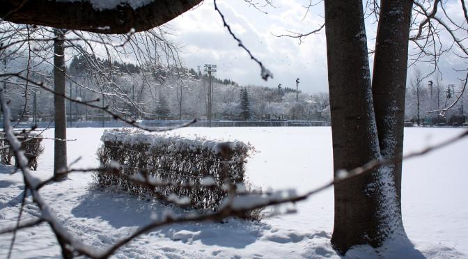 マイナス5度雪景色の公園_00