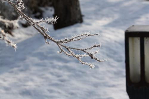 氷点下の公園の風景_02