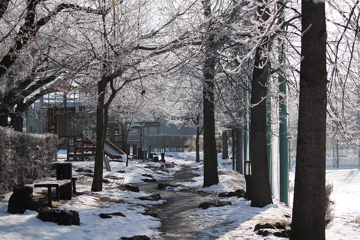氷点下の公園の風景_03