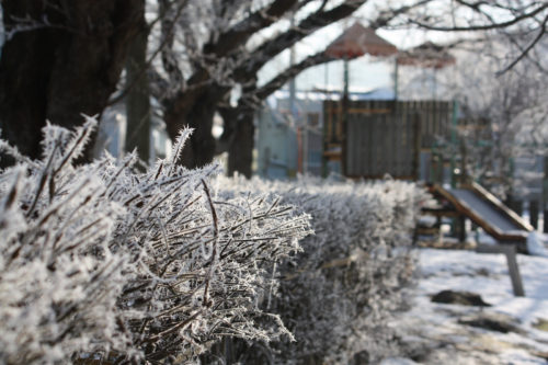 氷点下の公園の風景_07
